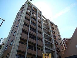 カーサ・アネシス[5階]の外観