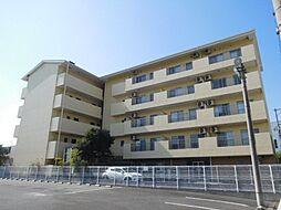 京阪本線 西三荘駅 徒歩4分の賃貸マンション
