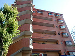 エレガンスニュー小川[3階]の外観