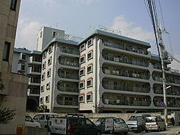興人甲東園マンション[403号室]の外観