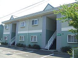 新潟県新潟市北区柳原1丁目の賃貸アパートの外観