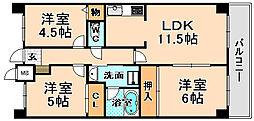 兵庫県伊丹市奥畑3丁目の賃貸マンションの間取り