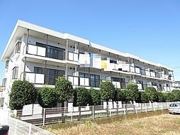 埼玉県上尾市本町4丁目の賃貸マンションの外観
