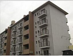庄野ビル[5階]の外観