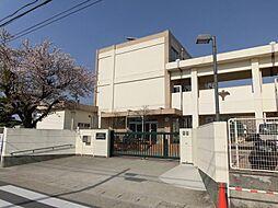 名古屋市立苗代小学校まで896m 徒歩約12分