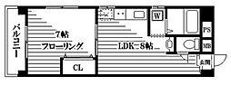 東京都豊島区北大塚1丁目の賃貸マンションの間取り