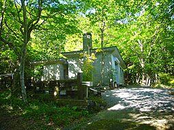 仙石原 緑に包まれるRCの家