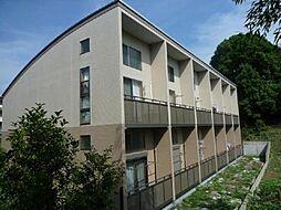 サンヴィアーレA[205号室]の外観