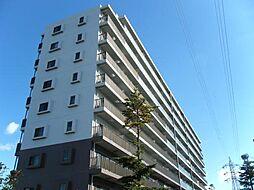 トロワボヌール本町[9階]の外観