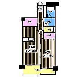 東京都調布市国領町2丁目の賃貸マンションの間取り