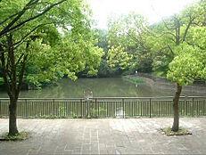 団地内の谷戸池公園