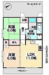 愛知県名古屋市天白区菅田1の賃貸マンションの間取り