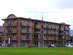 カサグランデ太宰府[4階]の外観