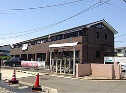 [テラスハウス] 神奈川県茅ヶ崎市浜之郷 の賃貸【神奈川県 / 茅ヶ崎市】の外観