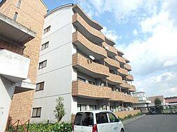 愛媛県新居浜市田所町の賃貸マンションの外観