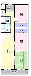 大阪府堺市中区深阪4丁の賃貸マンションの間取り