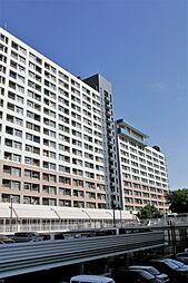 千島団地[6階]の外観