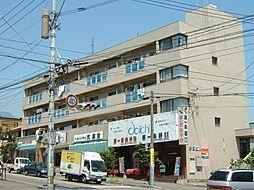 倉田ビル[203号室]の外観