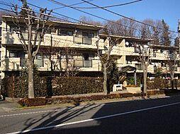 サンモール恋ヶ窪[105号室]の外観