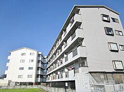 レオハイム津田II[4階]の外観