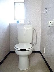 トイレの後ろには棚があるので季節のお花やかわいい置物を置いてもいいですね。(2019年1月7日撮影)