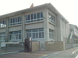中学校弥富市立弥冨中学校まで1845m