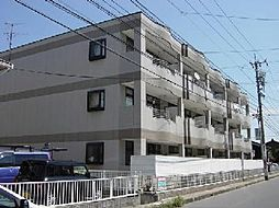 愛知県一宮市今伊勢町馬寄字若宮の賃貸マンションの外観