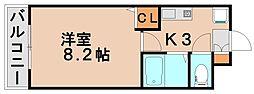ラフォーレ白水ヶ丘[2階]の間取り