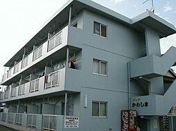 ヨットかわしまII[3階]の外観