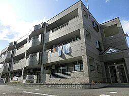 愛知県清須市春日寺廻りの賃貸マンションの外観