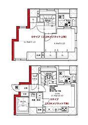 都営大江戸線 月島駅 徒歩2分の賃貸マンション 5階2LDKの間取り