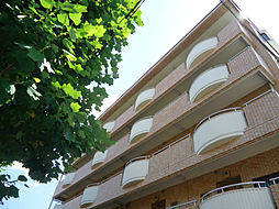 ヴィレッジ 20[4階]の外観