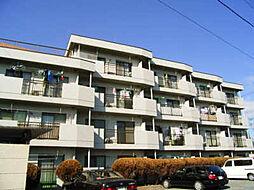東京都立川市上砂町5丁目の賃貸マンションの外観