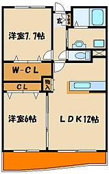 ラフィーネ松江[3階]の間取り