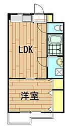 神奈川県川崎市中原区井田杉山町の賃貸マンションの間取り