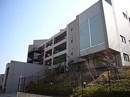 苦楽園口駅 1.1万円