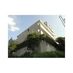 アレンダール葛城[6階]の外観