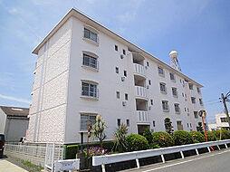 滋賀県栗東市高野の賃貸マンションの外観