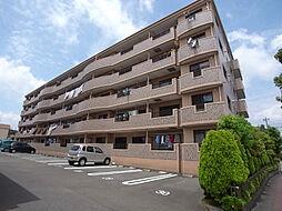 ラフィーネ掛川aI[1階]の外観