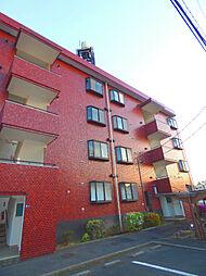 埼玉県さいたま市中央区新中里2丁目の賃貸マンションの外観