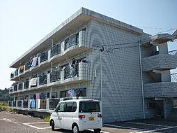 プラスハイツ須崎[302号室]の外観
