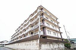群馬県高崎市上佐野町の賃貸マンションの外観
