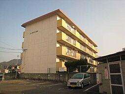 福岡県太宰府市坂本3丁目の賃貸マンションの外観