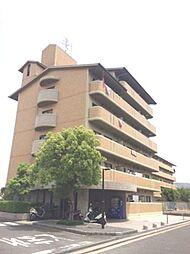 フレアコートコスモ[5階]の外観
