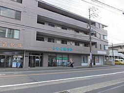 [テラスハウス] 神奈川県相模原市中央区上矢部2丁目 の賃貸【/】の外観
