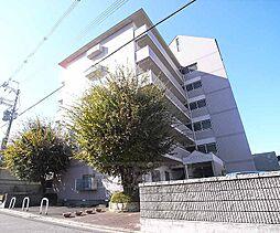 京都府京都市伏見区大津町の賃貸マンションの外観