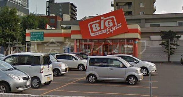 ザ・ビッグエクスプレス平岸店 1245m
