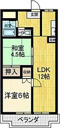 千葉県松戸市小根本の賃貸マンションの間取り