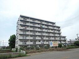 埼玉県坂戸市大字片柳の賃貸マンションの外観