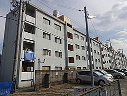 八尾マンション[1階]の外観